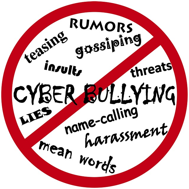 Speech on cyber bullying