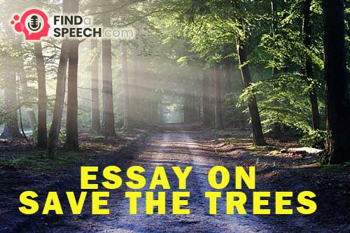 Essay on Save the Trees
